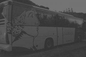 rotulación bus